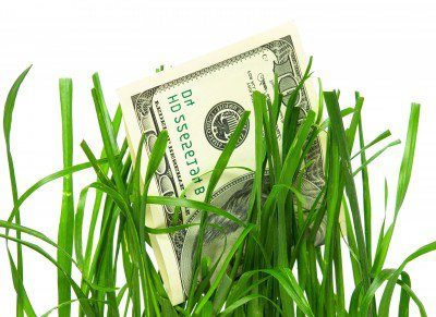 Money & grass