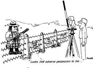 Adverse Possession Cartoon